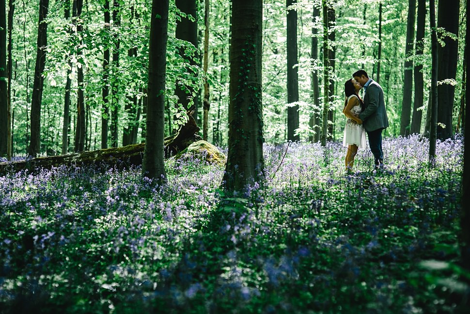 Engagement session in Hallerbos